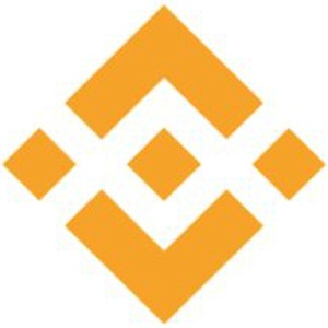 Binance Coin (BNB) bij cryptobeginner.nl