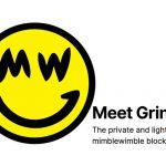 Mimblewimble, de nieuwe hype in cryptoland