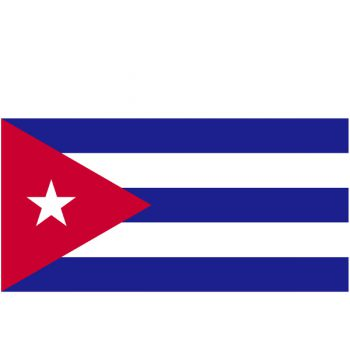 John McAfee biedt crypto expertise aan aan Cuba